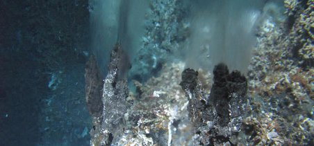 A view of a hydrothermal vent at the Main Endeavour Field on the Juan de Fuca Ridge, snapped from the submersible Alvin. Credit: Woods Hole Oceanographic Institution