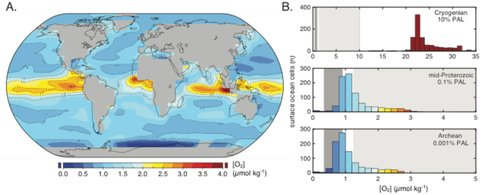 Figure 2. Earth system model results for dissolved O2 levels in the surface ocean.