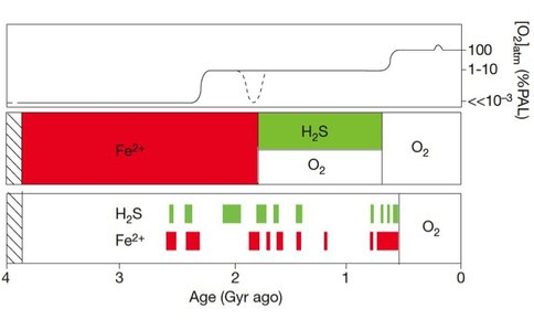 Marine Chemical Conditions in the Precambrian Ocean