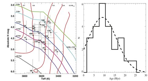 Astronomical Analysis of Primary Stars in the TW Hydrae Association