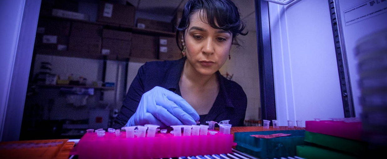 Betül Kacar in her lab. Image credit: None
