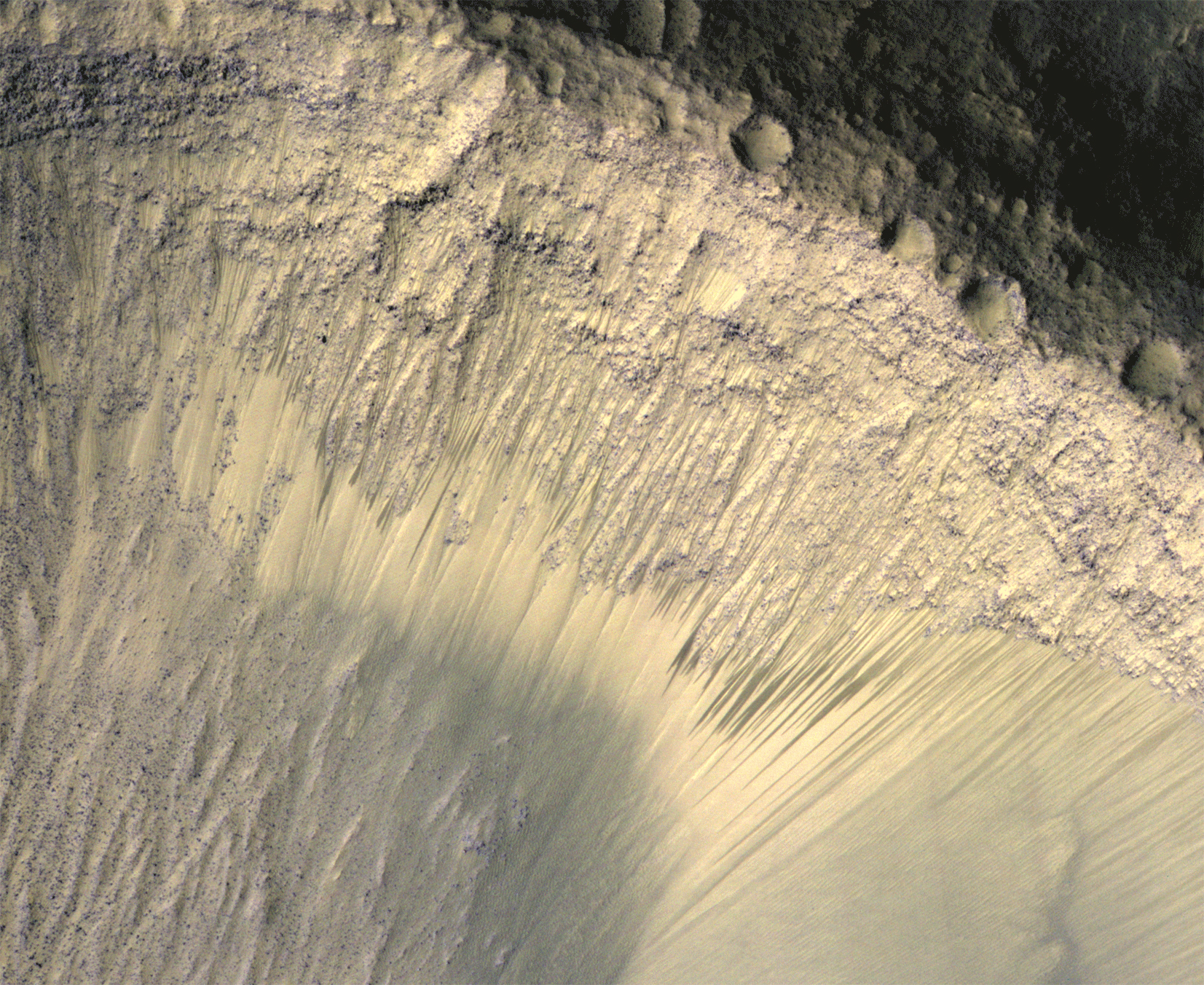 An image of recurring slope lineae on Mars, which are believed to represent the movement of briny water on the Red Planet's surface. These areas may be hospitable to microbes. Credit: NASA/JPL-Caltech/Univ. of Arizona Image credit: None