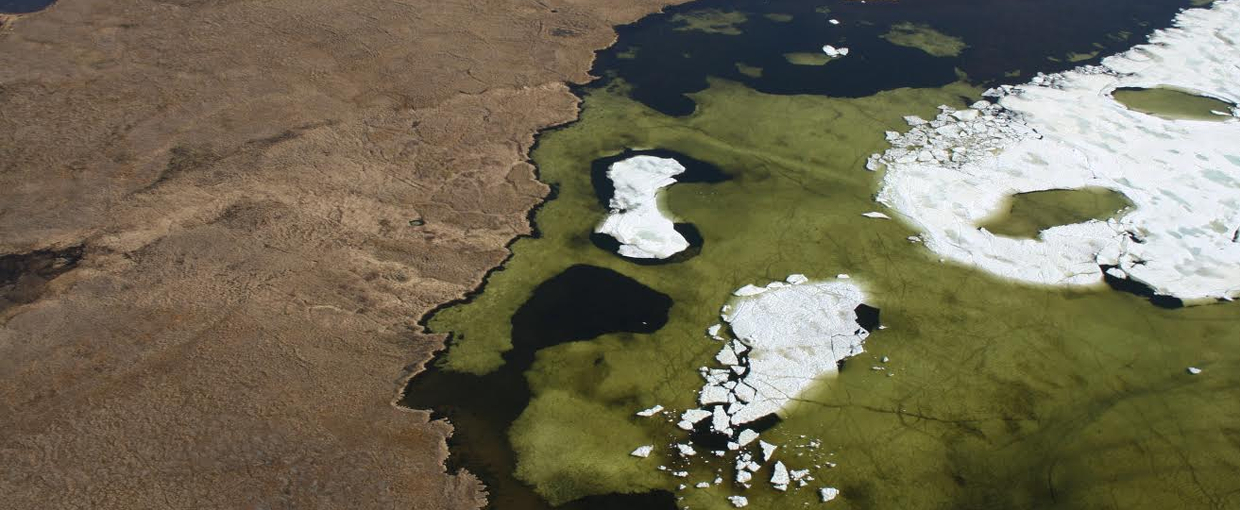 Algal bloom in Arctic pond near Tiksi viewed from a Soviet transport helicopter. Image credit: None