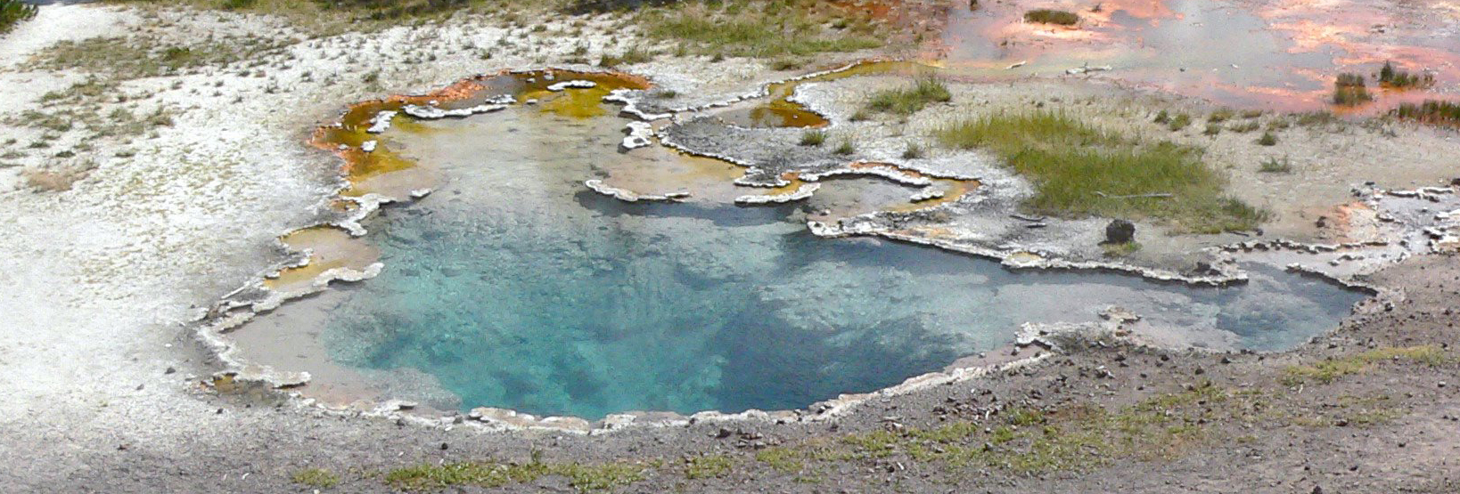 Octopus Spring in Yellowstone National Park. Credit: David Strong, Penn State University Image credit: None