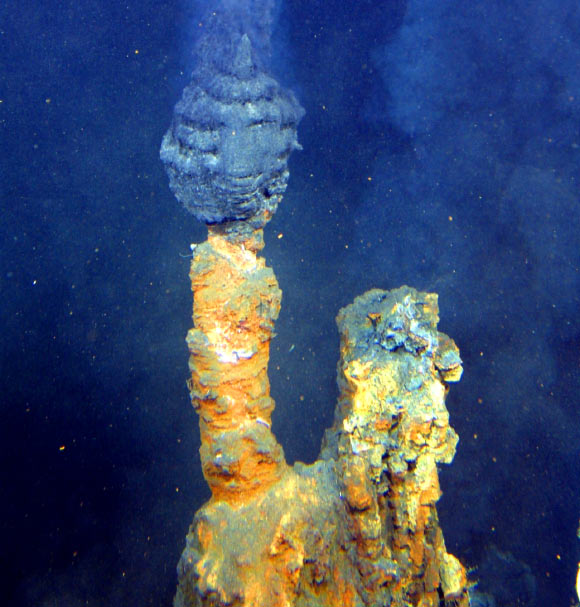Alkaline hydrothermal vents may have played a role in the origin of life. Image credit: NOAA