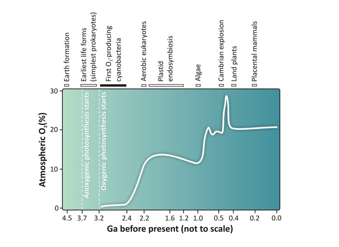 How the concentration of free oxygen in the atmosphere has varied throughout Earth's history.
