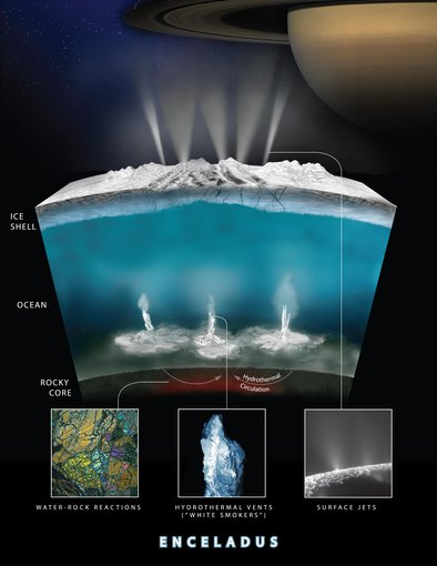 Saturn's moon Enceladus harbors an ocean that could contain life beneath its icy surface. A future mission to explore this ocean is therefore a serious contamination hazard that could damage any biosphere on Enceladus.