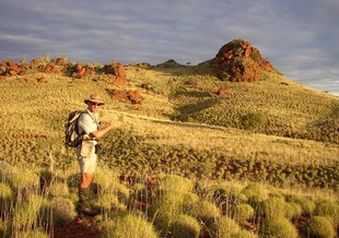 Martin Van Kranendonk, who is Director of the Australian Center for Astrobiology, doing field work in the Pilbara.