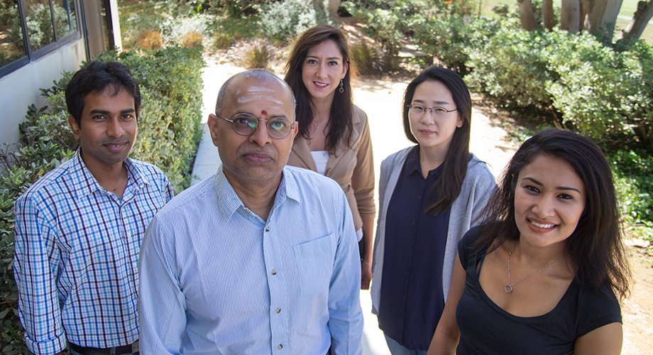 Members of the Krishnamurthy Lab at the Scripps Institute. From left to right: Subhendu Bhowmik, Ramanarayanan Krishnamurthy, Clémentine Gibard, Kim, Eun-Kyong, Megha Karki. Subhendu Bhowmik is the lead author of the paper released this week in Nature.