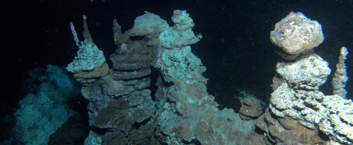 The field of hydrothermal vents known as Loki's Castle, in the North Atlantic Ocean, where scientists found archaea believed to be related to the archaea that created eukaryotes through endosymbiosis with bacteria.