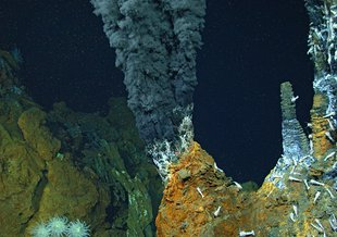 Too hot to host life, the high temperature Beebe Vents black smokers serve as the source fluids for nearby mixing zones that span the thermal boundary between habitable and uninhabitable below-seafloor environments.