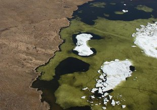 Algal bloom in Arctic pond near Tiksi viewed from a Soviet transport helicopter.