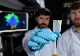 Physicist Peter Yunker and evolutionary biologist Will Ratcliff in Yunker's lab at Georgia Tech. Yunker holds a sample of nascent multicellular yeast clusters used in the experiments.
