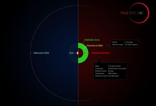 Comparison of the orbit of Proxima Centauri  b with the same region of the solar system. Proxima Centauri is smaller and cooler than the sun and the planet orbits much closer to its star than Mercury. As a result it lies well within the habitable zone.